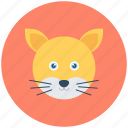 cat, feline, coon, animal, lynx
