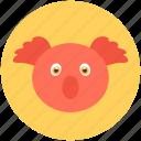 wombat, koala, animal, koala bear, wallaroo