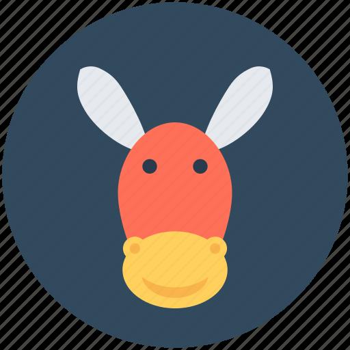 animal, ass, donkey, mule, okapi icon