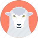 animal, ewe, farm animal, lamb, sheep icon