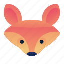wild, wildlife, fox, animal