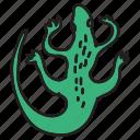 animals, lizard, pet, reptile