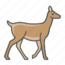 deer, wild, animal icon