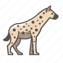 hyena, wild, animal