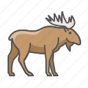 animal, moose, wild icon