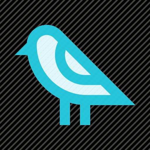 animal, bird, forest, nature, twitter icon