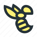 bee, fly, honey, hornet, insect, nature, wasp