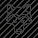 dog, head, husky, wolf