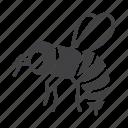 honeybee, bumblebee, bee, honey icon