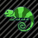 animal, chameleon, zoo icon