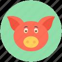 animal, mammal, pig, tapir, wild boar