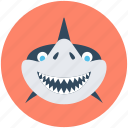 animal, marine mammal, shark, whale, whale shark icon