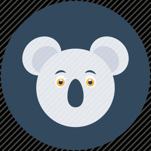 animal, koala, koala bear, wallaroo, wombat icon