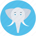 mammal, pachyderm, elephant, animal, zoo icon