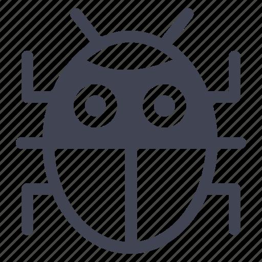 animal, beetle, bug, insect, nature icon