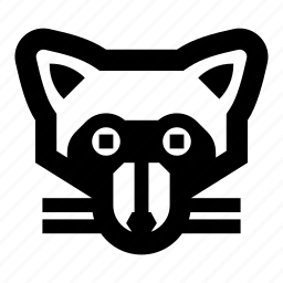 animal, animals, face, raccoon, zoo icon