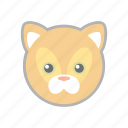 cat, kitten, kitty, pet icon