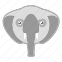 elephant, nature, wild, zoo icon