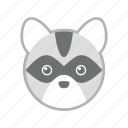 coon, raccoon, wild, zoo icon