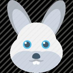 animal, bunny, cony, hare, rabbit icon