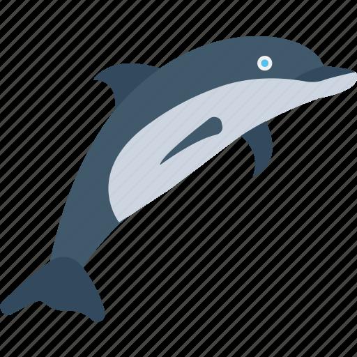 Marine mammal, mammal, whale, dolphin, animal icon