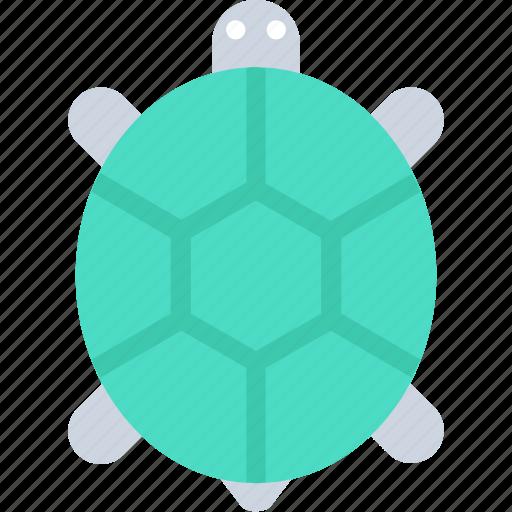 animal, reptile, terrapin, tortoise, turtle icon