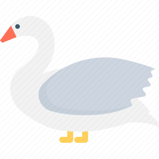 bird, domestic fowl, duck, goose, stork icon