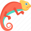 animal, chameleon, gecko, lizard, reptile icon