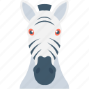 mammal, zebra head, zebra, animal, zoo