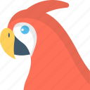 bird, parrot, pet, psittacines, zoo icon