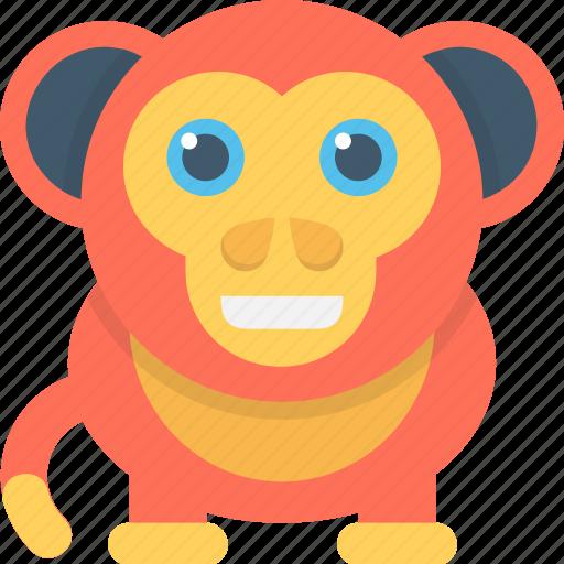 animal, baboon, macaque, monkey, monkey face icon