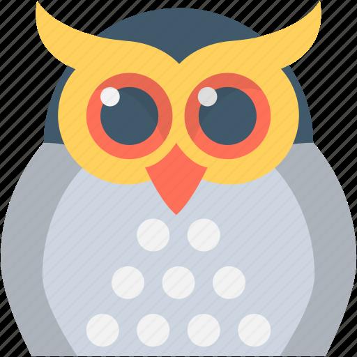 animal, eagle owl, owl, owl face, owl sage icon