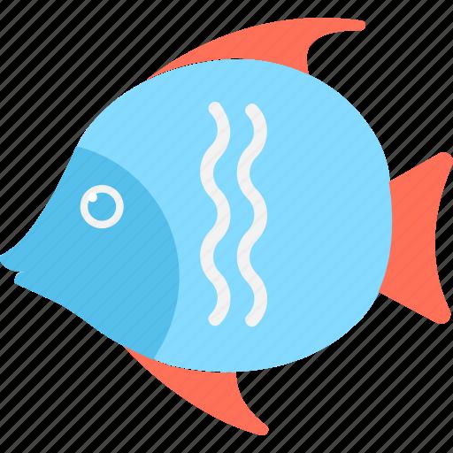 animal, fish, goldfish, mammal, seafood icon
