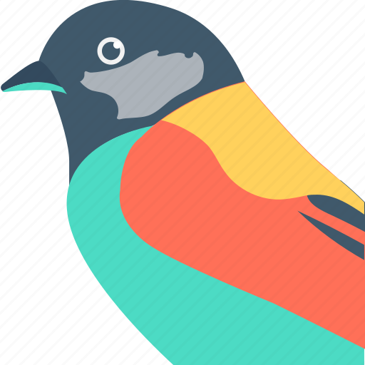 Pet, parrot, bird, psittacines, zoo icon
