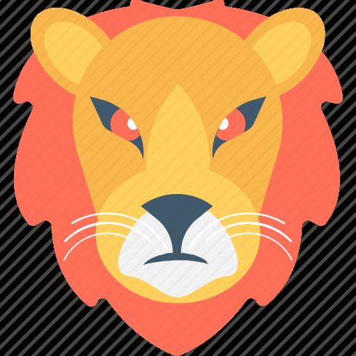 Lion, zoo, panthera leo, safari animal, wild animal icon