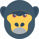 animal, baboon, gorilla, macaque, monkey icon