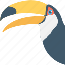 bird, hummingbird, ramphastos, toucan, zoology icon