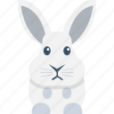 bunny face, pet, rabbit, rabbit face, wildlife icon