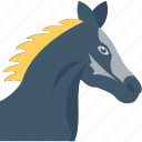mare, colt, bronco, horse, animal