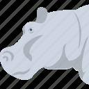 mammal, wild animal, hippopotamus, animal, hippo icon