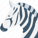 animal, mammal, zebra, zebra head, zoo icon