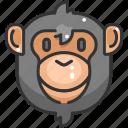 animal kingdom, animals, ape, mammal, monkey, wildlife, zoo icon