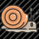 animals, shell, slow, slug, snail, wildlife icon