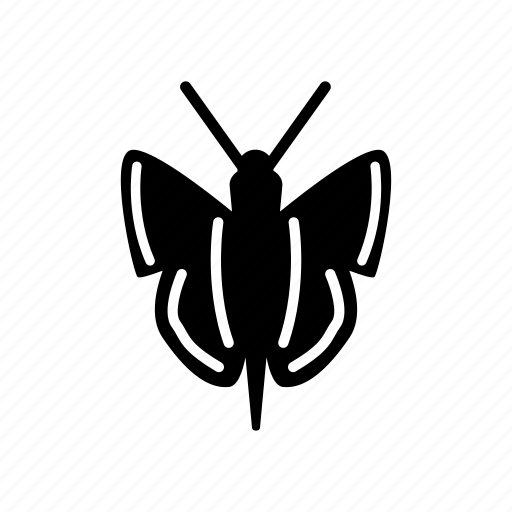 abstract, art, bird, butterfly, logo, wing, wings icon