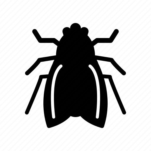 airplane, bug, fly, insect, nature, pest, wing icon