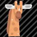 animal kingdom, animals, giraffe, mammal, wild life, zoo icon