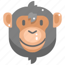 animal kingdom, animals, ape, mammal, monkey, wildlife, zoo icon