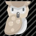 animal kingdom, animals, bird, hunter, owl, wild life icon