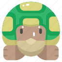 animal, animal kingdom, animals, turtle, wild life, zoo icon