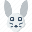 animal, pet, rabbit, wild icon